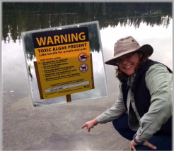 Rhonda Kaetzel, Public Health Toxicologist, assesses toxic blooms of cyanobacteria in Lake Wilderness, where a health advisory warns people and their pets to stay out of the lake. Lake Wilderness in Maple Valley is one of the few lakes in King County that produces anatoxin, a dangerous nerve toxin that can be very harmful if swallowed.