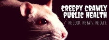 creepy crawly fb cover